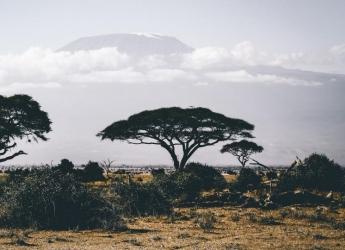 5 Days/4 Nights Lake Manyara & Ngorongoro Safari
